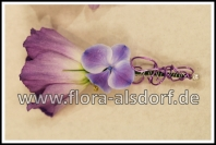 corsage_lysianthus_hortensie_lila
